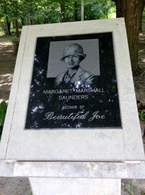 BJ plaque